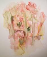17_roses-004_v2.jpg